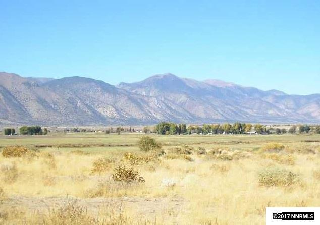 4 Carter Ln, Smith, NV 89430 (MLS #170007507) :: The Matt Carter Group | RE/MAX Realty Affiliates