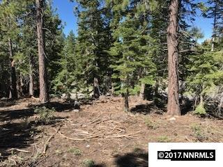 205 Donna Way, Stateline, NV 89449 (MLS #170008638) :: RE/MAX Realty Affiliates