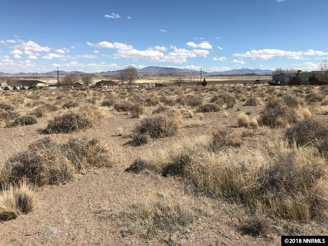 TBD Locust Drive, Yerington, NV 89447 (MLS #180003636) :: The Matt Carter Group | RE/MAX Realty Affiliates