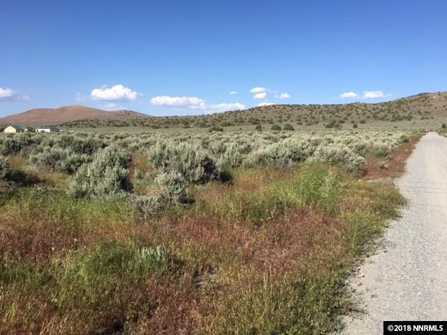 0 Antelope Valley Road, Reno, NV 89506 (MLS #180008014) :: The Mike Wood Team