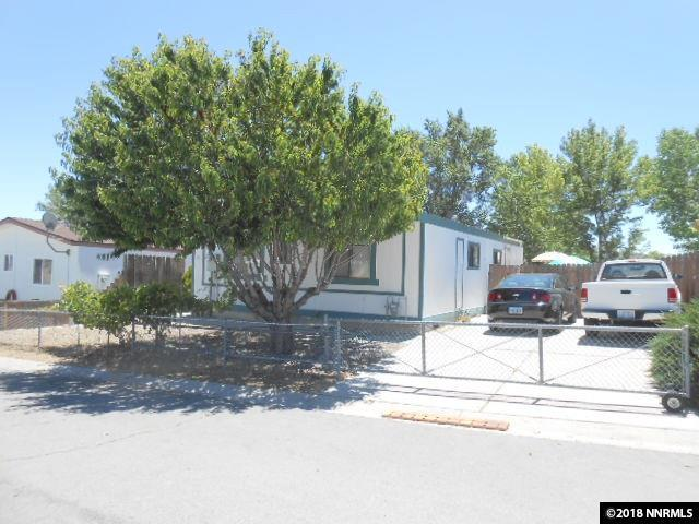 182 James Court, Moundhouse, NV 89706 (MLS #180008771) :: The Mike Wood Team