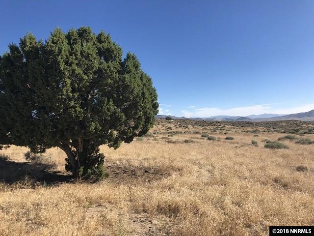 000 Jackrabbit  Road, Reno, NV 89510 (MLS #180012284) :: NVGemme Real Estate