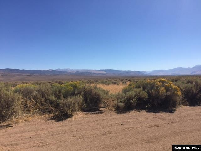 4237 Bosler, Wellington, NV 89444 (MLS #180013211) :: Chase International Real Estate