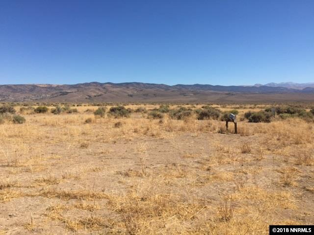 4307 Bosler, Wellington, NV 89444 (MLS #180013212) :: Chase International Real Estate