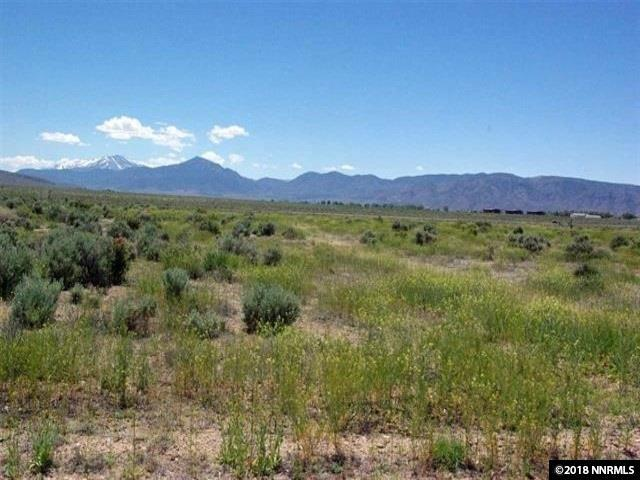 157 Mount Grant, Smith, NV 89430 (MLS #180014161) :: Harcourts NV1