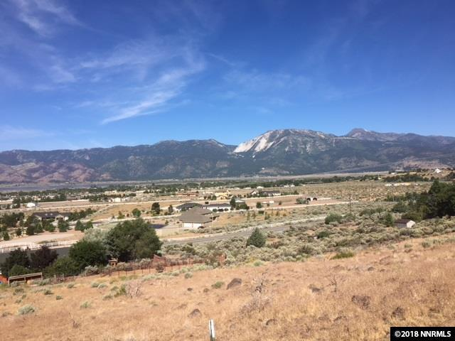 00 Cavataio Cir., Washoe Valley, NV 89704 (MLS #180015040) :: Harpole Homes Nevada