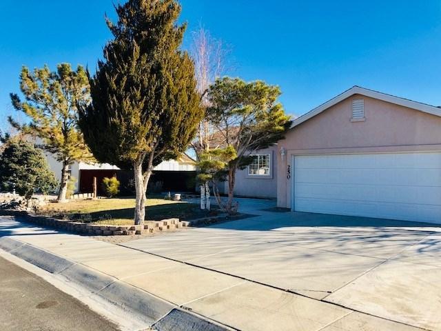 250 Mary Lou Lane, Fernley, NV 89408 (MLS #190000054) :: NVGemme Real Estate