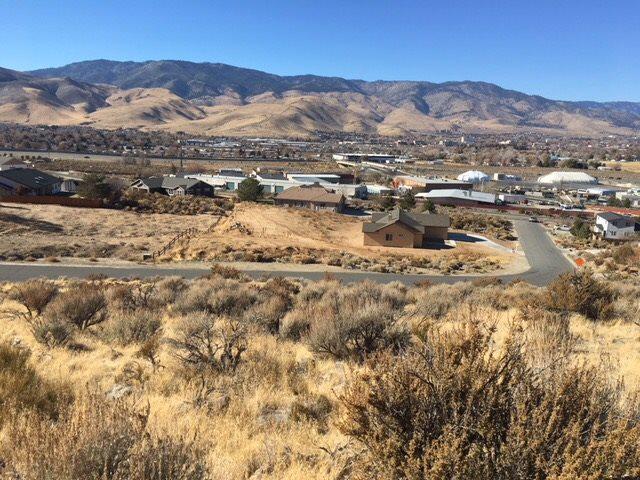 2233 Gentry Lane, Carson City, NV 89701 (MLS #190002169) :: Marshall Realty
