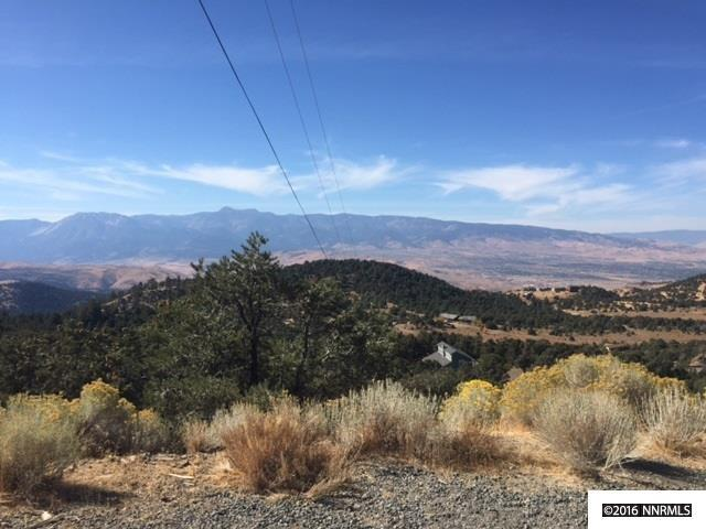 21300 Highland Rd, Reno, NV 89521 (MLS #190005478) :: Vaulet Group Real Estate