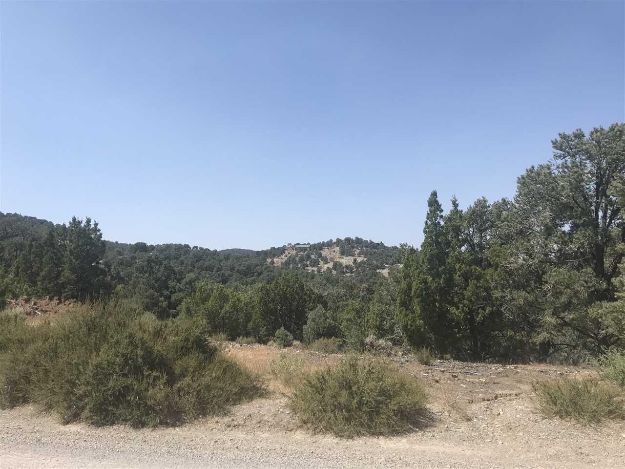 2080 Silverado Road - Photo 1