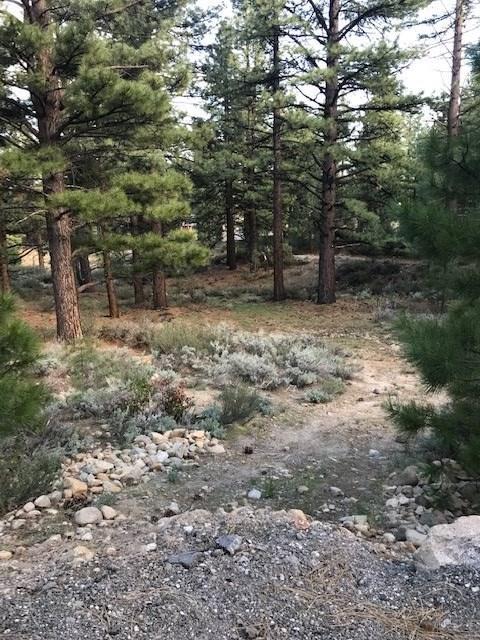 0 Maggie Lane, Reno, NV 89511 (MLS #190007078) :: NVGemme Real Estate