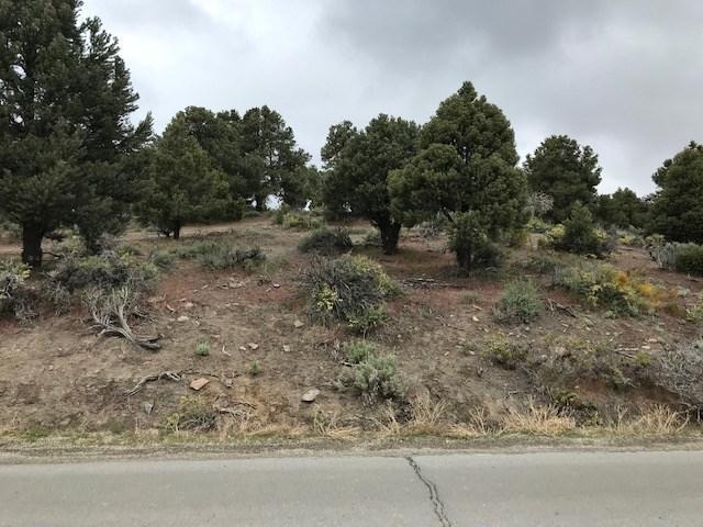 2318 Cartwright Rd, Reno, NV 89521 (MLS #190007425) :: Vaulet Group Real Estate