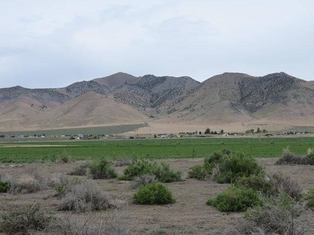 0 Grass Valley Rd - Photo 1