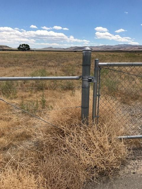 9625 Highway 50 East, Stagecoach, NV 89429 (MLS #190010829) :: NVGemme Real Estate
