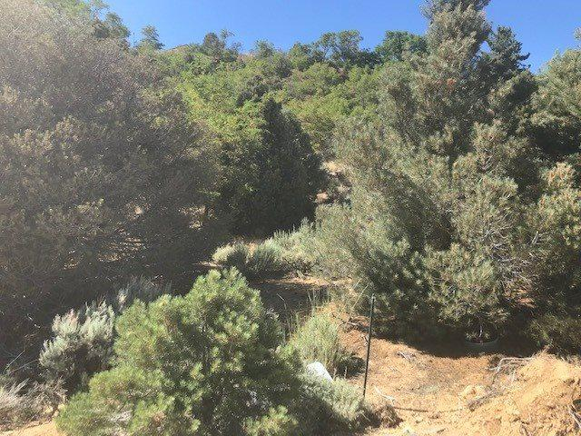 280 South M St., Virginia City, NV 89440 (MLS #190011467) :: Northern Nevada Real Estate Group