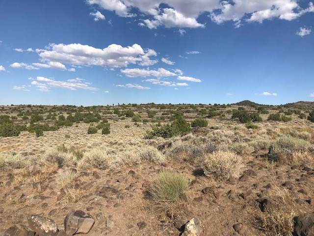 Lot 162S Virgnia Ranches, Reno, NV 89521 (MLS #190014651) :: Northern Nevada Real Estate Group