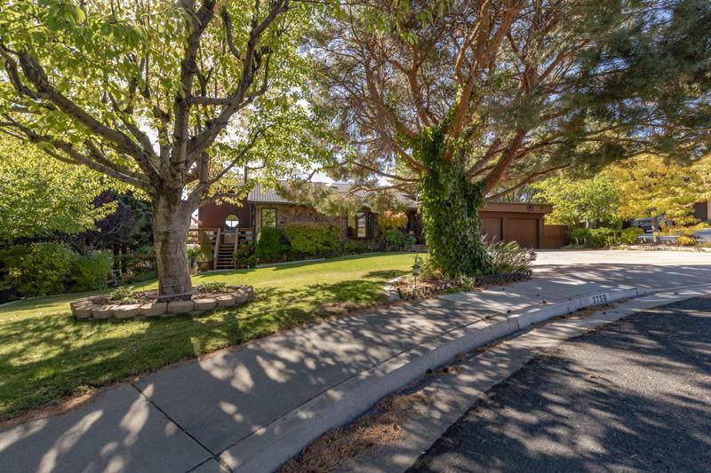 3750 El Cerro View Circle - Photo 1