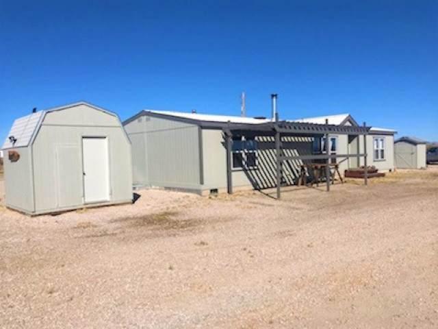 4180 Tarzyn Rd., Fallon, NV 89406 (MLS #190015786) :: Vaulet Group Real Estate