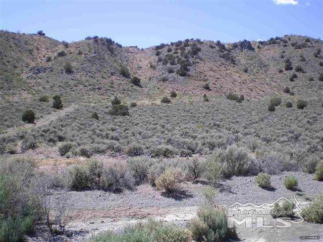 1250 Freds Mountain, Reno, NV 89508 (MLS #190017390) :: Harcourts NV1