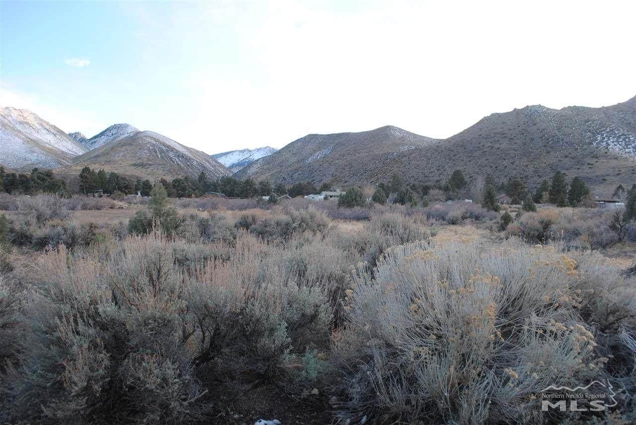 0 Mule Deer Road - Photo 1