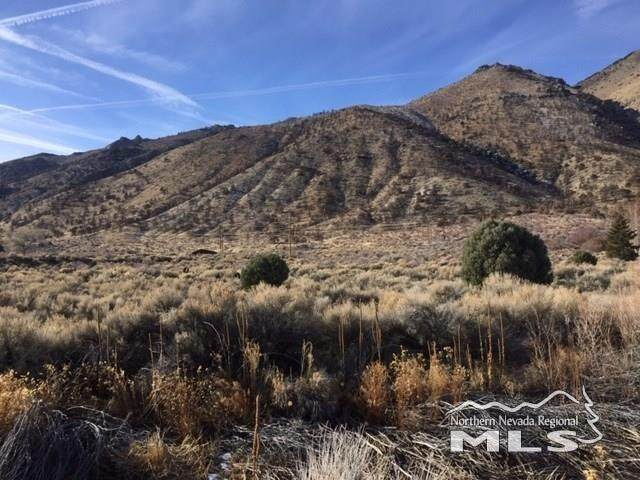 340 Upper Colony Rd, Wellington, NV 89444 (MLS #200009206) :: NVGemme Real Estate