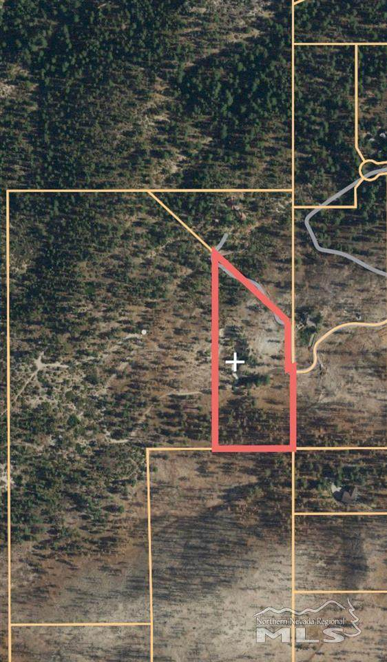 4000 Old Ranch Rd., Washoe Valley, NV 89704 (MLS #200009482) :: Fink Morales Hall Group