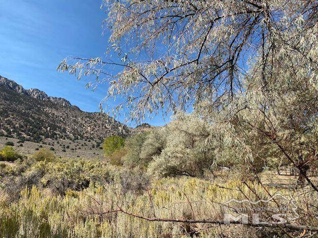 LOT 9 Highway 395, Topaz, Ca, CA 96133 (MLS #200013893) :: Chase International Real Estate