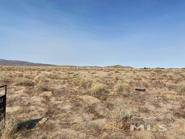 0 6th Street, Silver Springs, NV 89429 (MLS #200014025) :: Theresa Nelson Real Estate
