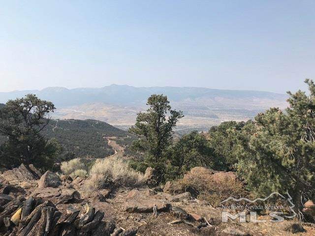 1330 Yellowjacket Rd, Reno, NV 89521 (MLS #200014226) :: The Craig Team