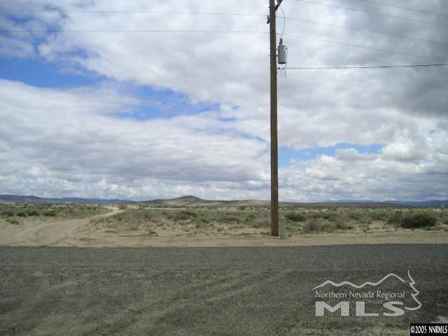 1045 Holly Ave, Silver Springs, NV 89429 (MLS #200014996) :: Ferrari-Lund Real Estate
