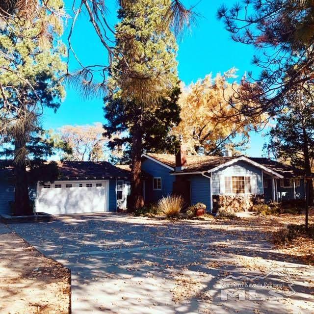 100 Landing Lane, Washoe Valley, NV 89704 (MLS #200015160) :: The Mike Wood Team