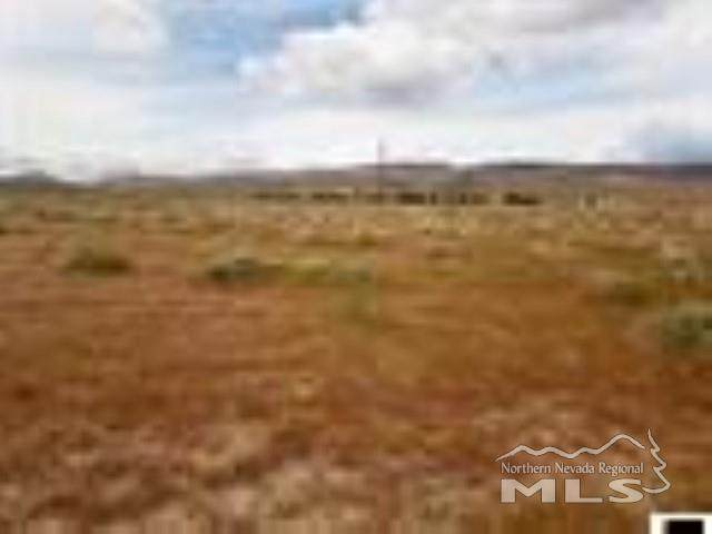 3965 Twain Ave, Silver Springs, NV 89408 (MLS #210002465) :: Chase International Real Estate
