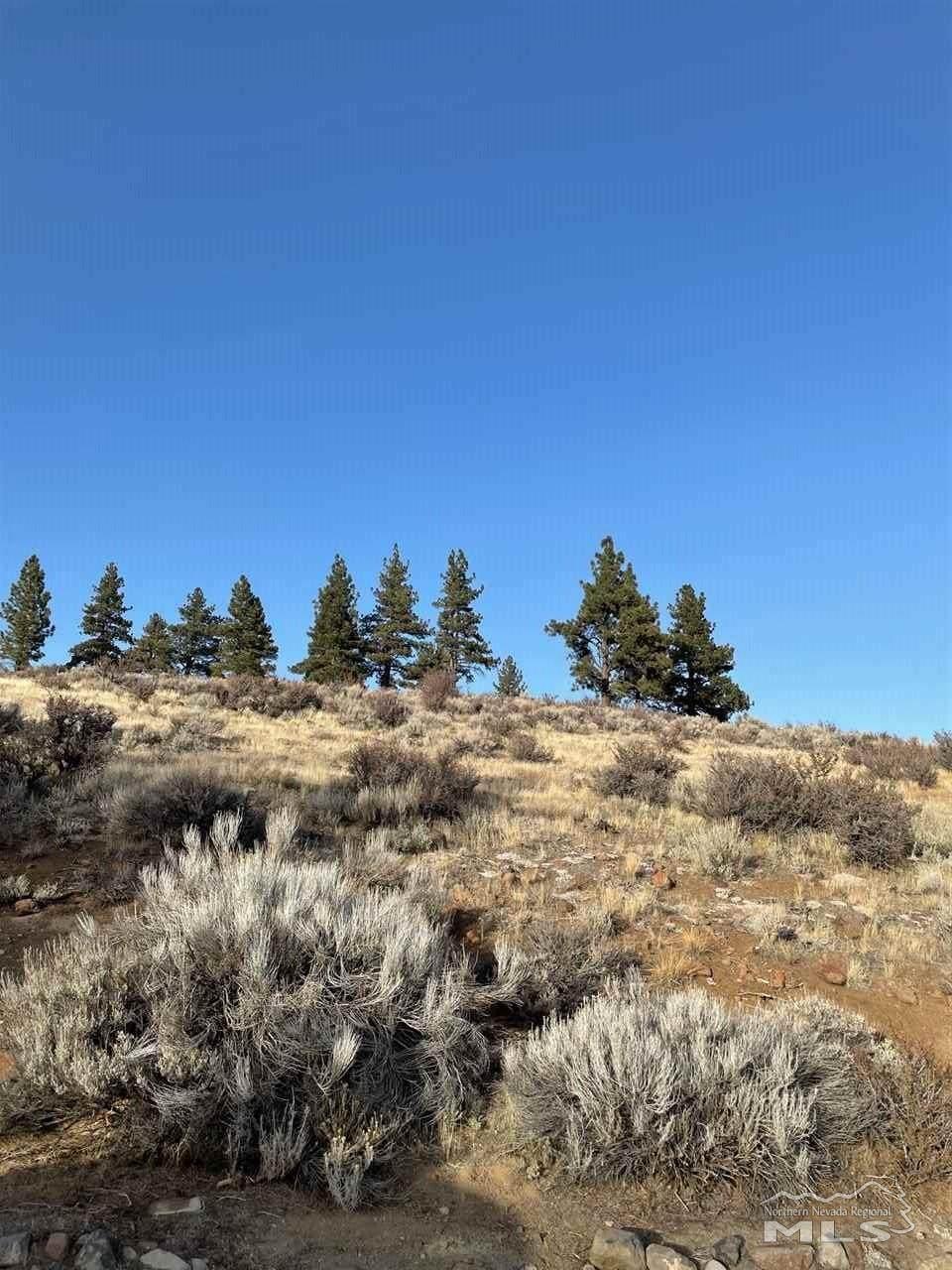 7251 Granite Ridge Rd. - Photo 1