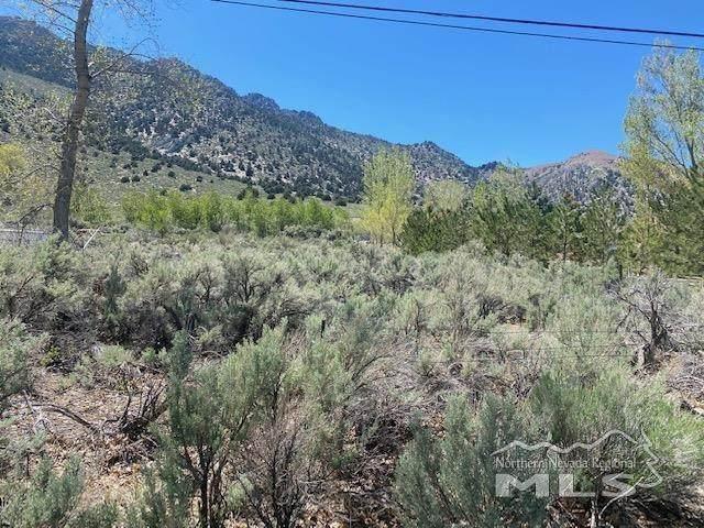 Lot 14 Us Highway 395, Topaz, Ca, CA 96133 (MLS #210006385) :: Chase International Real Estate