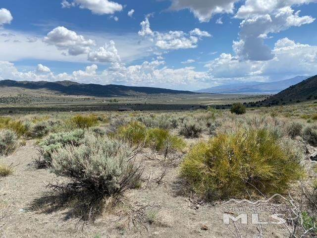 1220 Freds Mountain Rd, Reno, NV 89506 (MLS #210006734) :: Theresa Nelson Real Estate
