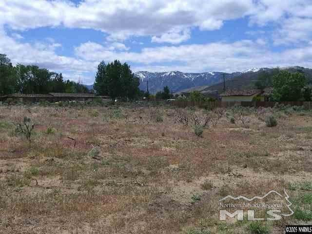 0000 Valley View, Carson City, NV 89701 (MLS #210008007) :: Craig Team Realty