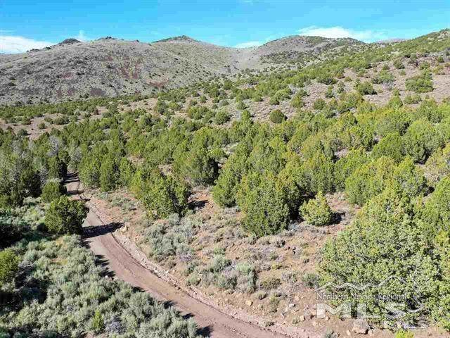 Wilcox Ranch, Reno, NV 89510 (MLS #210008047) :: Chase International Real Estate
