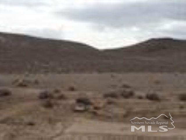 2275 Industry, Silver Springs, NV 89429 (MLS #210011185) :: The Mike Wood Team