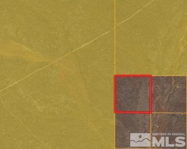 40 Acres Near Marigold Mine, Valmy, NV 89445 (MLS #210012607) :: Chase International Real Estate