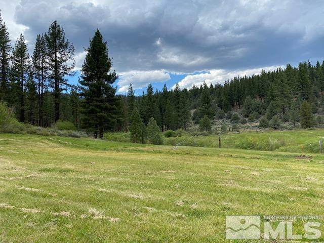 141 Hot Springs Road, Markleeville, Ca, CA 96120 (MLS #210016083) :: The Coons Team