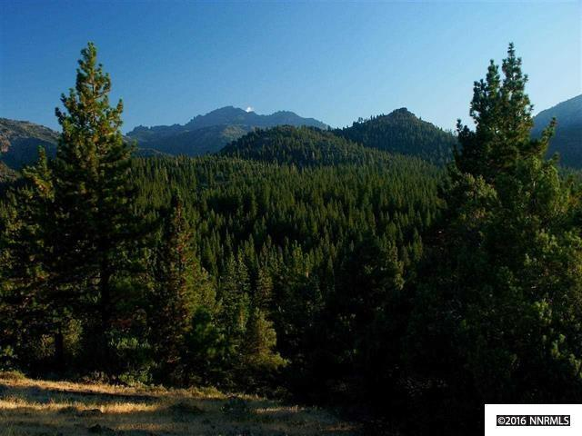 Lot 12 Silver Peak, Markleeville, Ca, CO 96120 (MLS #130003144) :: Harcourts NV1