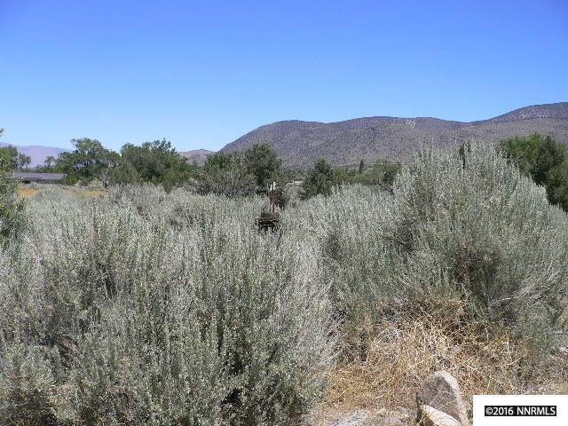 Lot U-12 Mule Deer, Walker, Ca, CA 96107 (MLS #160009383) :: Marshall Realty