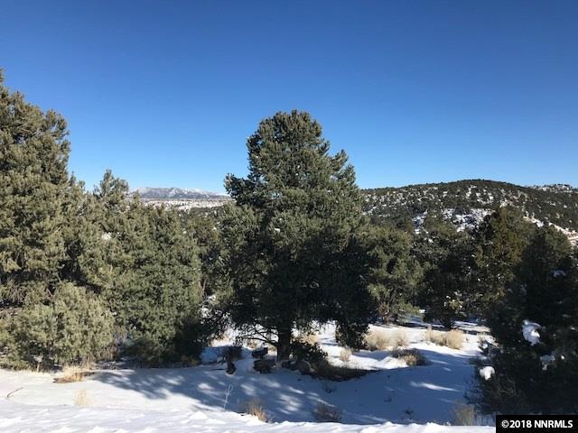 2221 Bulette, Reno, NV 89521 (MLS #180002634) :: Harcourts NV1