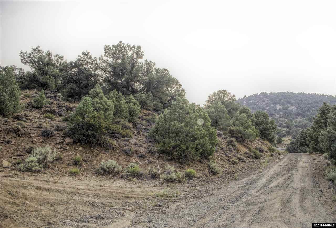 2390 Wildrose Drive - Photo 1