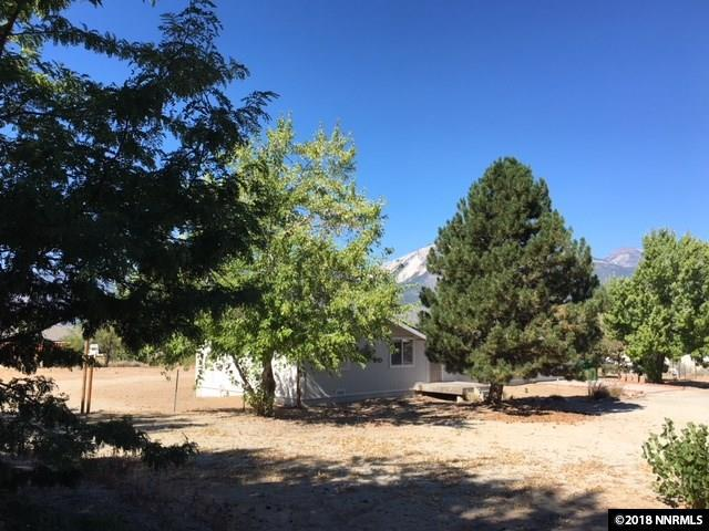 2945 Eagle Street, Washoe Valley, NV 89704 (MLS #180013633) :: Joseph Wieczorek | Dickson Realty