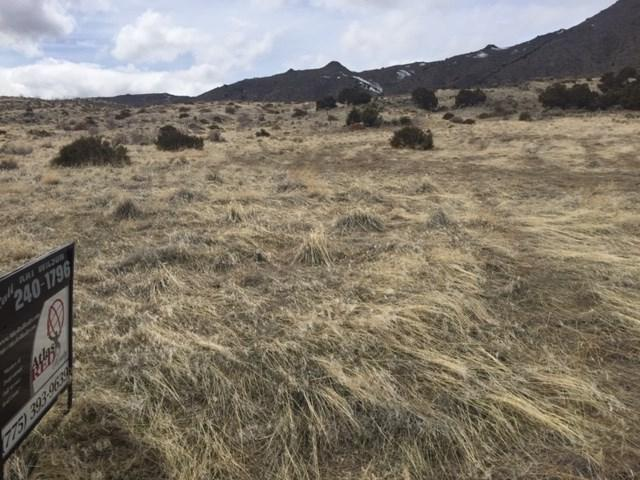 Serpentine, Reno, NV 89506 (MLS #190000094) :: Theresa Nelson Real Estate