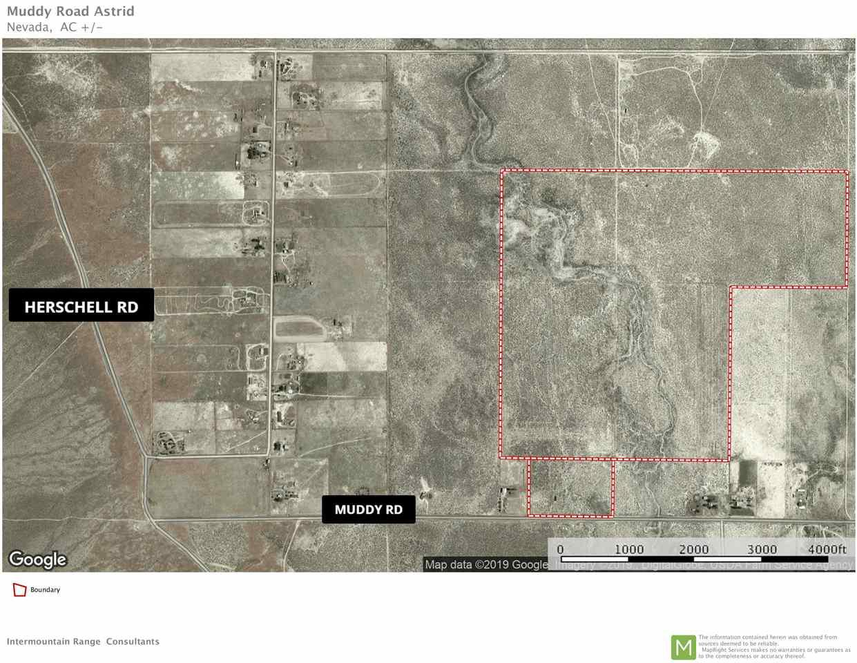3149 Muddy Road, 2 Parcels - Photo 1