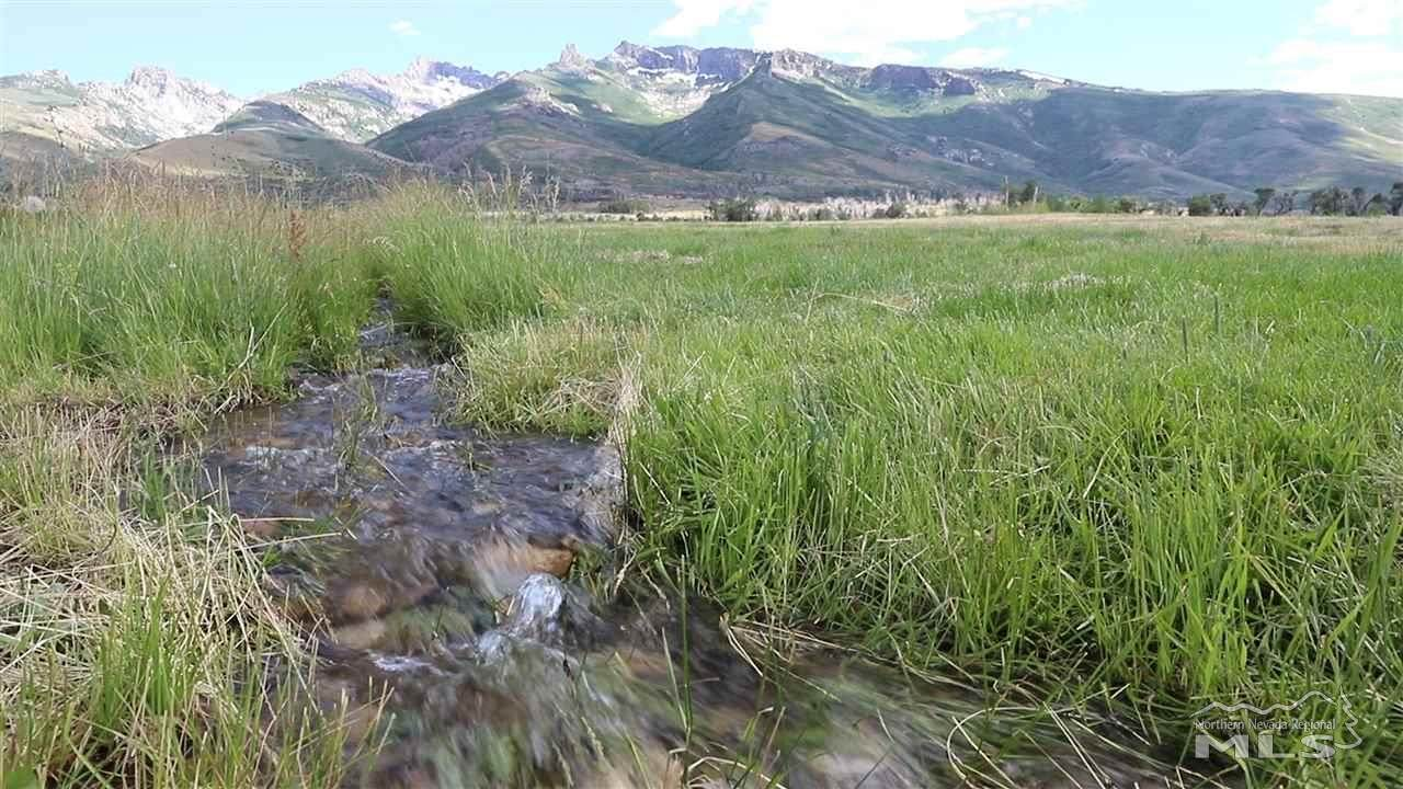 Ruby Mountains - Pleasant Valley Road - Photo 1