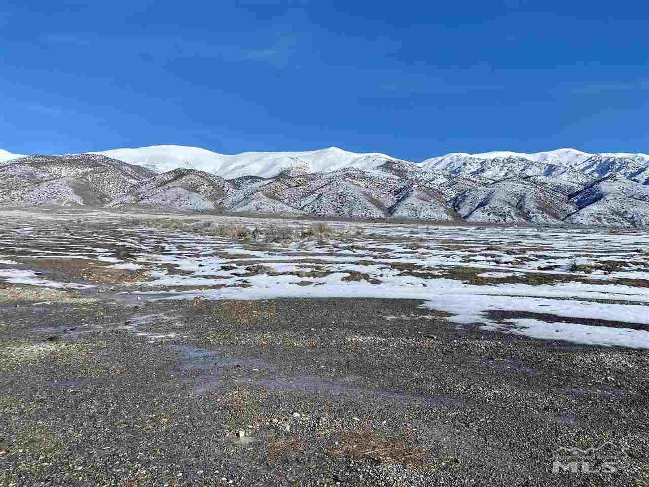 12705 Ruby Marsh Trail - Photo 1