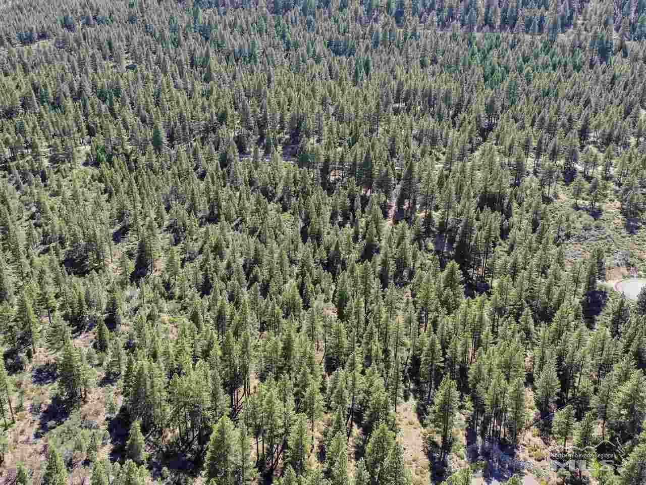 0 Abies Road - Photo 1